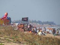 Бархатный сезон на Арабатской стрелке!(фото)